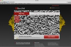 Sukurta nauja internetinė svetainė apie granulių degiklius